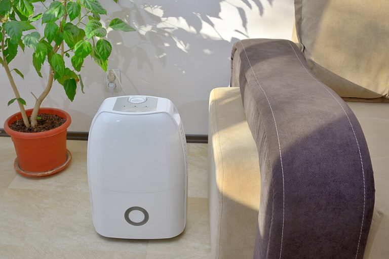 home dehumidifier in a living room